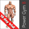 Power Gym 8
